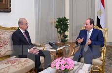 Ai Cập: Nội các của Thủ tướng Ismail đệ đơn từ chức