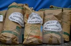 Bayer và Monsanto hoàn tất thương vụ sáp nhập lịch sử