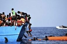 Hơn 200 người di cư bỏ mạng tại vùng biển Libya chỉ trong 2 ngày