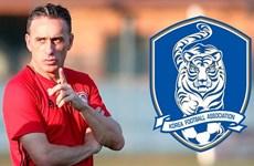 Cựu huấn luyện viên tuyển Bồ Đào Nha Paulo Bento dẫn dắt Hàn Quốc