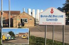 Hai người tử vong nghi do rò rỉ hóa chất tại một nhà máy ở Anh