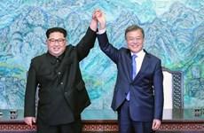 NIS: Chưa có quyết định nào liên quan chuyến thăm của ông Kim Jong-un