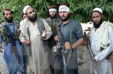 Mỹ tìm kiếm thỏa thuận chính trị giữa Chính phủ Afghanistan và Taliban
