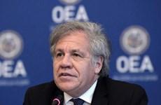 Tổng Thư ký OAS bị khai trừ khỏi đảng cầm quyền ở Uruguay