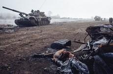 Tổng thống Nga cảnh báo việc sử dụng vũ lực giải quyết vấn đề Donbass
