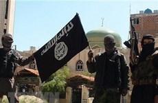 IS gia tăng tấn công các lực lượng người Kurd tại Syria