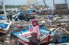 New Zealand hỗ trợ Indonesia khắc phục hậu quả sóng thần