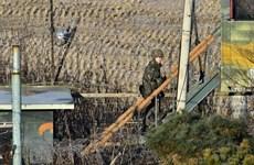Phái viên hạt nhân Hàn-Nhật thảo luận vấn đề Triều Tiên