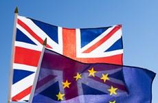 Ireland tuyên bố không phủ quyết đề nghị kéo dài thời hạn chót Brexit
