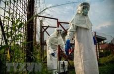 Hy vọng mới về vaccine đa năng phòng mọi chủng virus Ebola