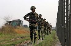 Ấn Độ-Pakistan đọ súng tại biên giới, căng thẳng tiếp tục leo thang