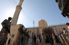 Ai Cập tiêu diệt 7 phiến quân thuộc nhóm khủng bố Hasm