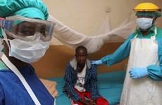 Gia tăng số ca tử vong do nhiễm virus sốt xuất huyết Lassa ở Nigeria