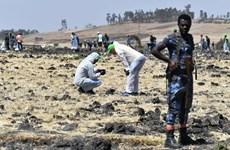 Ethiopian Airlines khẳng định phi công đã được đào tạo để lái 737 Max