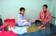 Hà Giang: Hai cháu bé nhập viện vì bị chó cắn trên đường đi học về