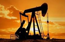 Giá dầu thô đi lên trên thị trường châu Á nhờ OPEC giảm nguồn cung