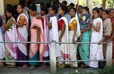 Bầu cử Hạ viện Ấn Độ: Đã có thương vong trong ngày đầu tiên