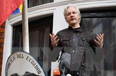 Ecuador giữ quan điểm rút quy chế tị nạn với nhà sáng lập WikiLeaks