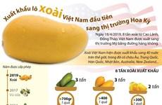 [Infographics] Xuất khẩu lô xoài Việt Nam đầu tiên sang thị trường Mỹ