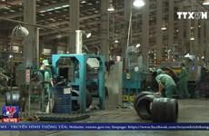 [Video] Đà Nẵng lắp wifi miễn phí phục vụ đời sống công nhân