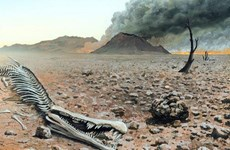 Lời cảnh báo về một thảm họa tuyệt chủng trên Trái Đất