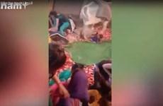 [Video] Bò thần nổi điên giẫm đạp người dự tế lễ ở Ấn Độ