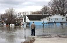 Thủ đô Ottawa, Canada ban bố tình trạng khẩn cấp về lũ lụt