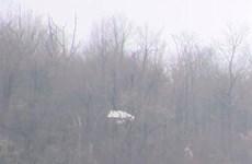 Mỹ: Tai nạn máy bay ở Pennsylvania làm 2 người thiệt mạng