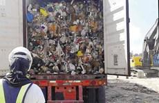 Ottawa đề xuất đưa các container rác thải từ Philippines về Canada