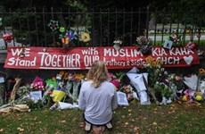 Đạo diễn người Ai Cập sẽ làm phim về vụ xả súng ở Christchurch