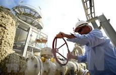 Giá dầu châu Á giảm gần 1% phiên ngày 23/5 do dự trữ dầu Mỹ tăng
