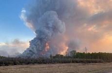 Canada: Hàng chục nghìn người phải sơ tán do cháy rừng ở Alberta