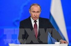 Tổng thống Nga sẽ sớm thống nhất về sản lượng với OPEC
