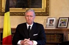 Nhà vua Bỉ kéo dài thời gian tham vấn thành lập chính phủ