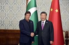 Trung Quốc và Pakistan nhất trí thúc đẩy quan hệ chiến lược