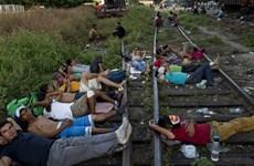 Mexico bắt gần 800 người di cư bất hợp pháp từ các nước Trung Mỹ