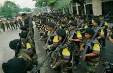 Colombia công bố gói biện pháp bảo vệ các cựu binh FARC