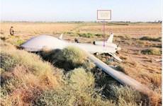 Iraq: Máy bay do thám không người lái của Mỹ bị rơi gần Baghdad