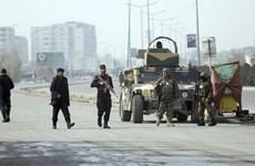An ninh Afghanistan bắt giữ hai nghi can khủng bố Taliban