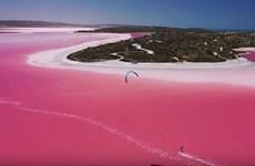 Dự án khôi phục mầu hồng của Hồ Pink Lake ở Australia