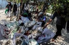 Hàng nghìn người Indonesia tham gia chiến dịch làm sạch các bãi biển
