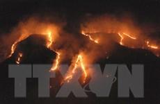 Hàng trăm đám cháy mới xuất hiện tại rừng Amazon ở Brazil