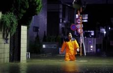 Siêu bão Hagibis: Nhật Bản huy động quân đội tìm kiếm, cứu nạn