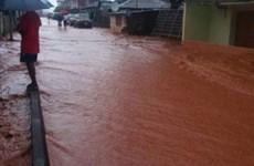 Cameroon: Hơn 100.000 người ảnh hưởng do lũ tại vùng Cực Bắc