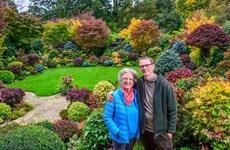 [Video] Ngắm nhìn khu vườn tuyệt tác của cặp vợ chồng già người Anh