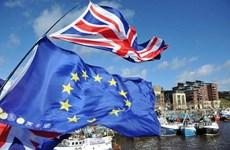 Vấn đề Brexit: Dư luận trái chiều về thỏa thuận mới giữa Anh và EU