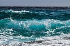 Anh phát triển sản xuất nhiên liệu phản lực sinh học từ nước biển