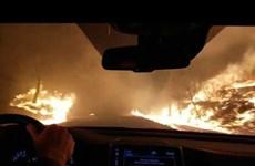 [Video] Trải nghiệm khi lái xe ngay cạnh đám cháy rừng