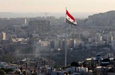Syria hướng tới việc thành lập ủy ban xem xét lại hiến pháp