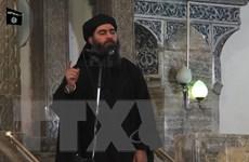 Thổ Nhĩ Kỳ bắt giữ người thân và vợ con của al-Baghdadi